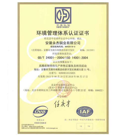 Yongjie - Environmental Management System Certificate